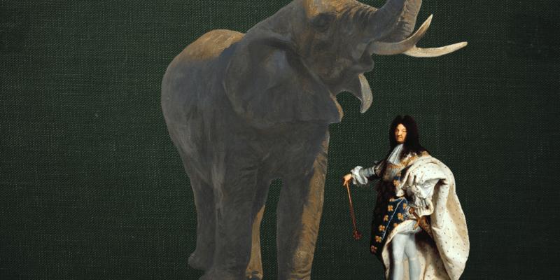 El Elefante del rey Luis XIV 🐘👑